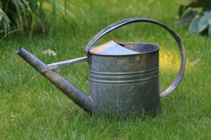 watering-can-828542_640