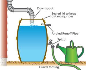rain-barrel-diagram.jpg